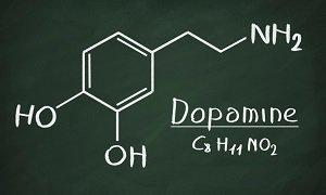 Как повысить дофамин в организме