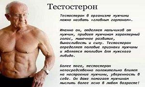 Тестостерон у мужчин норма гормона и причины отклонения