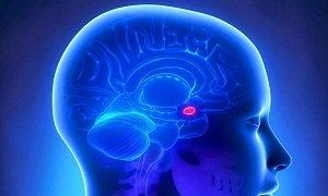 Повышенный пролактин у мужчин лечение