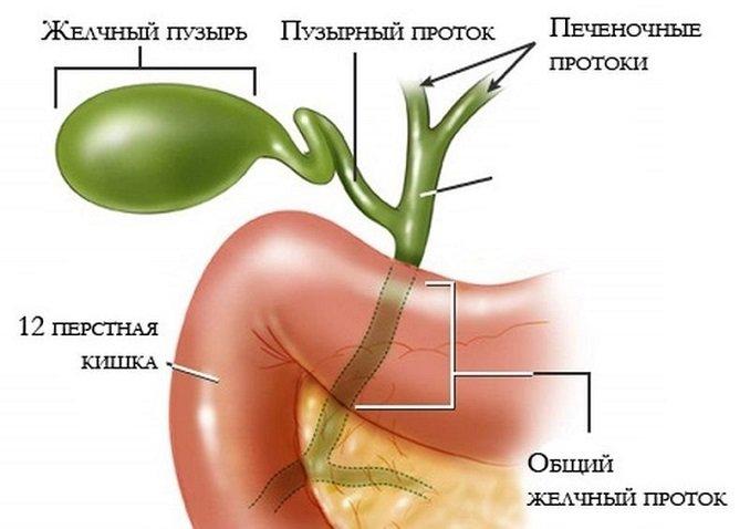 Холецистит симптомы температура